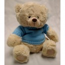 Bear with Blue Sweater
